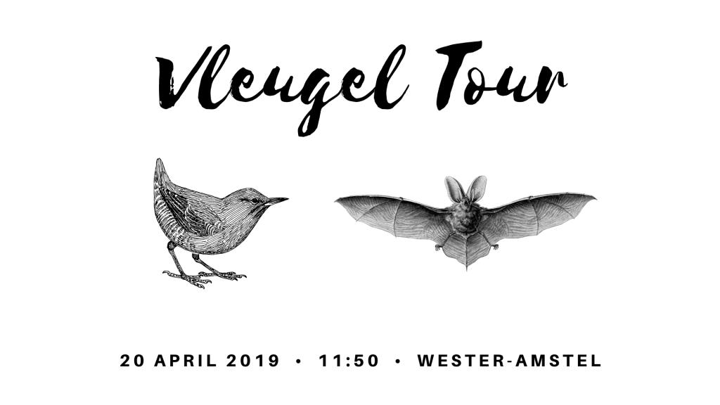 Bird & Bat Tour_NL