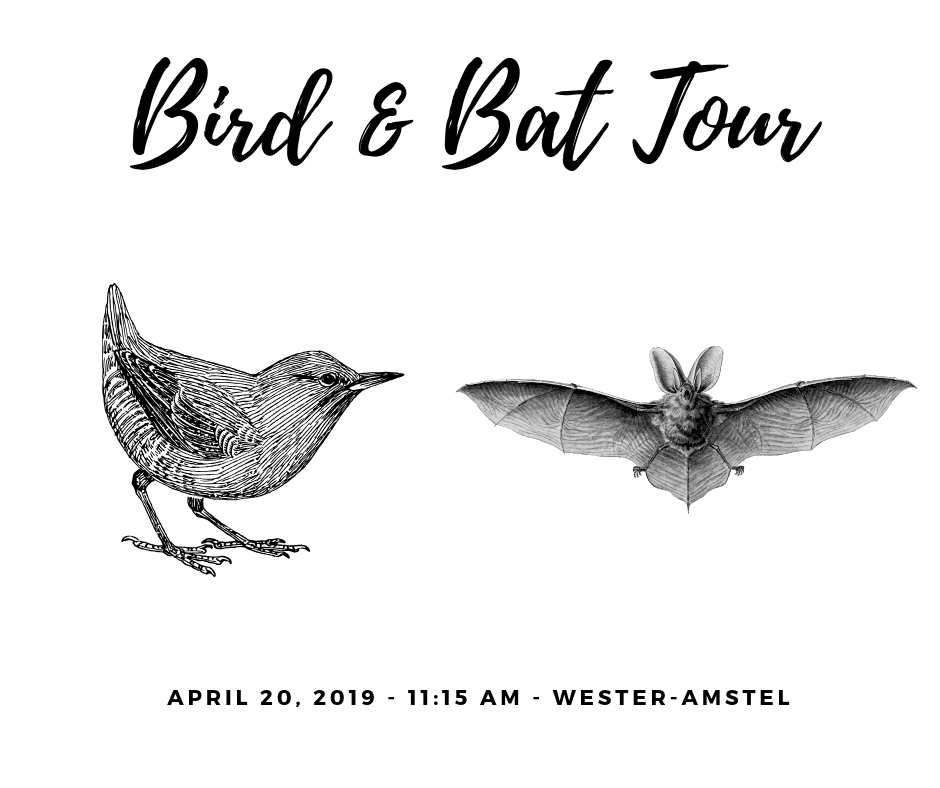 Bird & Bat Tour_NL