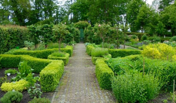 56-herb-garden-mai-2016_1_orig